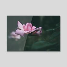 Rosebud - Acrylic by Kristin Elsen