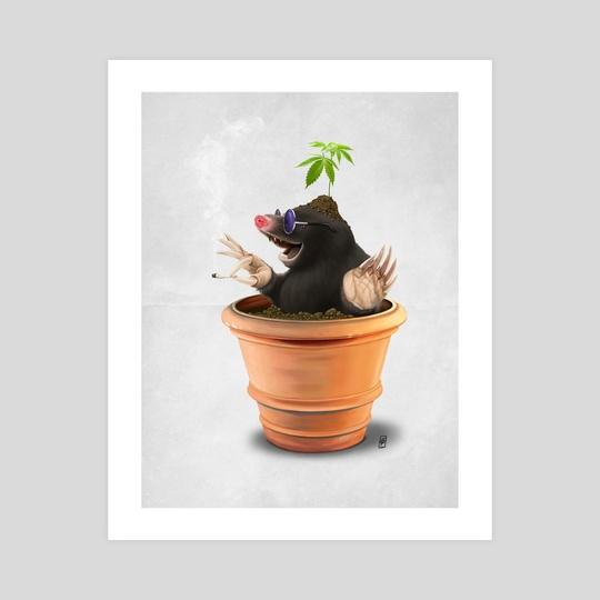 Pot (Wordless) by Rob Snow