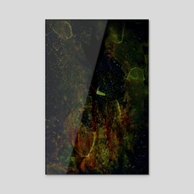 STP Screen Transfer Process - 0159 - Swing Vector 3 - Acrylic by Wetdryvac WDV