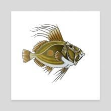 Green Fish - Canvas by Adam Lindsay Honsinger