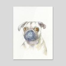 Pug portrait - Acrylic by Carl Conway