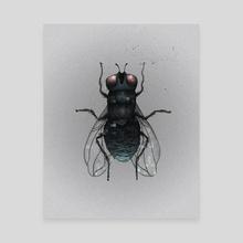 Digital Fly - Canvas by Amber Morgan