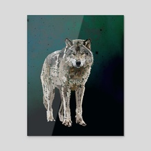 THE WOLF: THE GREY HUNTER - Acrylic by Rebecca Allen