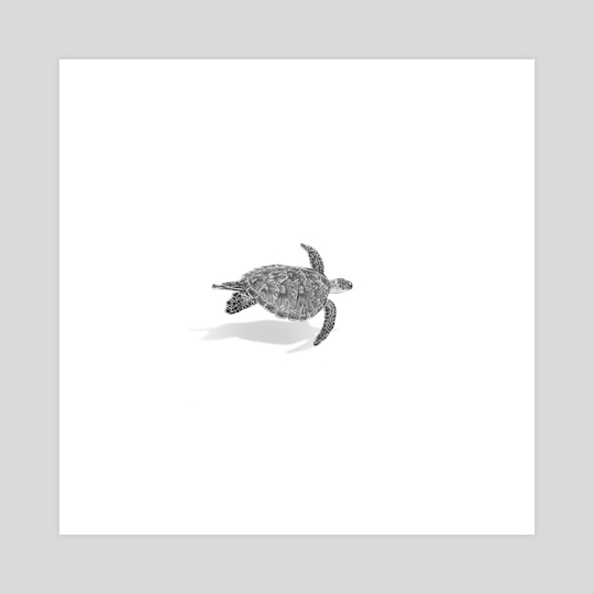 Green sea turtle far away perspective by andy kurniawan