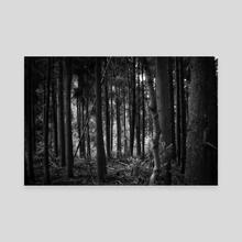 Dark Forest - Canvas by Diogo Pereira
