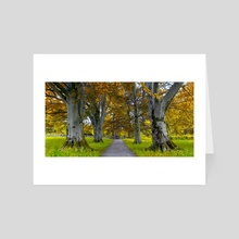 The Autumn Road - Art Card by Eirik Sørstrømmen