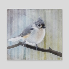 Tufted Titmouse  - Acrylic by Tom Schmitt