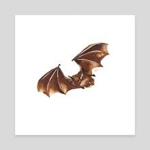 Pipistrelle Bat, Ink Animal Collection 1  - Canvas by Elizabeth Witchalls
