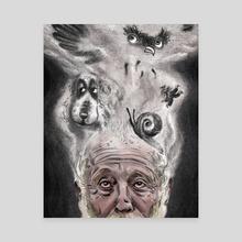 Hedgehog in the Fog - Canvas by Ciaran Murphy