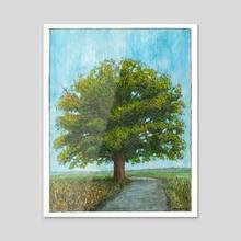 McBaine Bur Oak  - Acrylic by Cody Davis