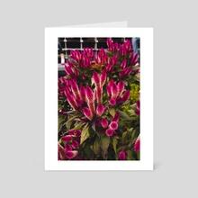 Bright Purple Flower - Art Card by Megan Tom