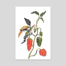 Pepper - Canvas by Serine + Sabine ...
