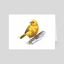 Canary - Art Card by Tracie MacVean