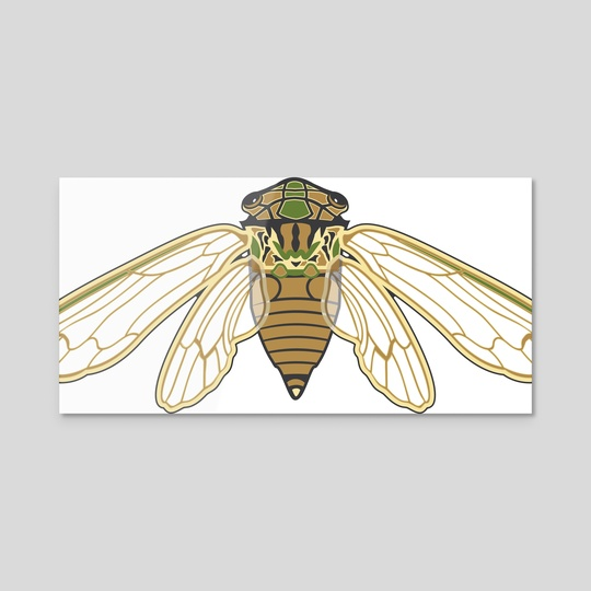 Cicada by Isabel Hundley