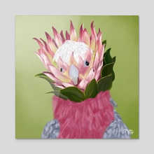 Galah Cockatoo + King Protea - Acrylic by Meghan Keeley