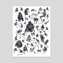 Fifty Primates - Canvas by Alison George