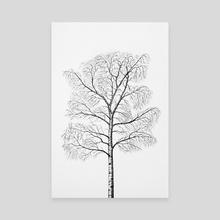 Birch - Canvas by Nika