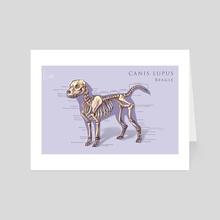 Dog Skeleton Chart - Art Card by Roselyne Lougnon