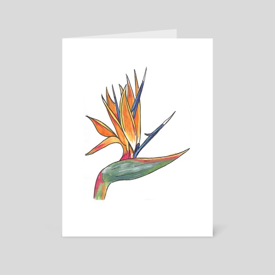 Bird of Paradise by Francesca Ciccone