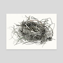 Nest Study - Canvas by Sam Pash