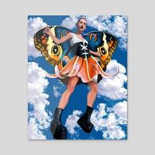 Papillon - Acrylic by hazel thexton