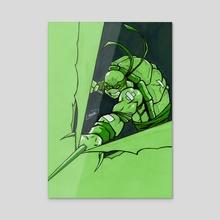 Raphael / Ninja Turtle - Acrylic by Antimo DeRocco