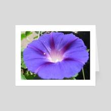 Violet flower. Macro photo. - Art Card by Dmytro Rybin