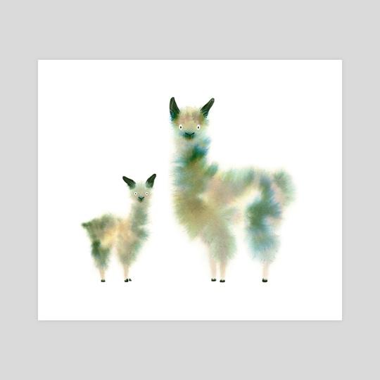 Alpacas V by Faryn Hughes