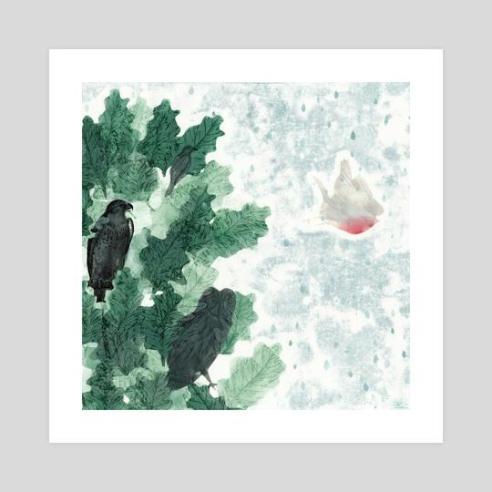 Robin by M. Broca