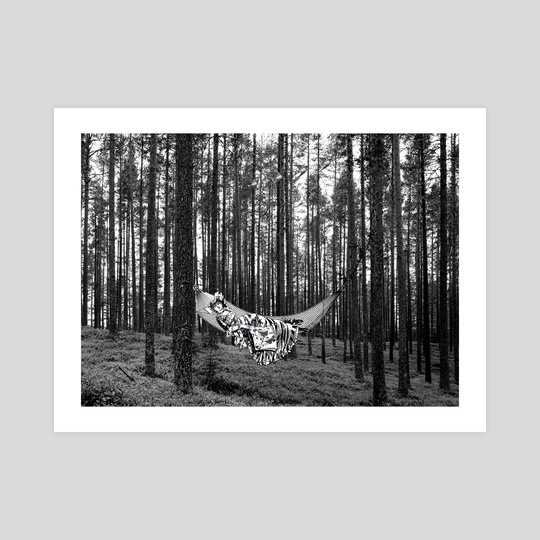 BETWEEN TREES by Gloria Sánchez