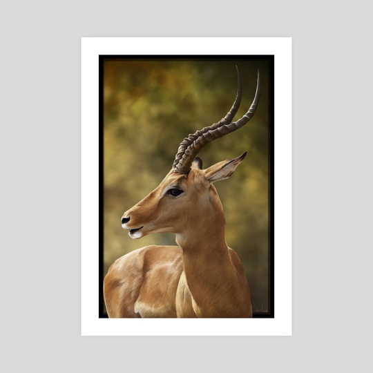 Gazelle by Katlyne Watts