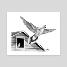 Mourning Doves - Canvas by Colin Hayes