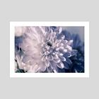 White flower - Art Print by Eye Spy Nature