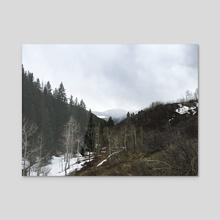Colorado Mountains - Acrylic by Sarah Kitzmann