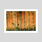 orange wall with bamboo trees - Art Print by Rahmat Nugroho