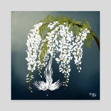 Paradise Flycatcher + White Wisteria - Canvas by Meghan Keeley