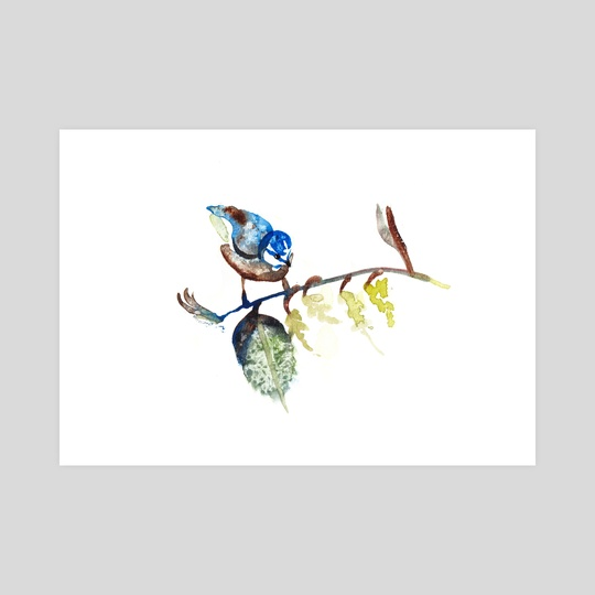 Small Bird by Daria Schreiber