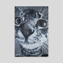 The Curious Kitten - Canvas by Joel Witiw
