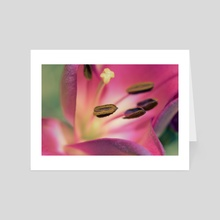 Vibrant Flower - Art Card by Eye Spy Nature
