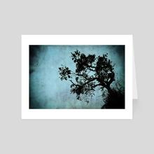 Bonsai Tree of the Night - Art Card by John Williams