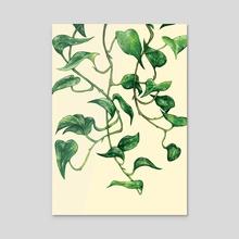 Devil's Ivy - Acrylic by Minnie  Small