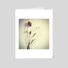 Herbarium I - Art Card by Sasha Mirov
