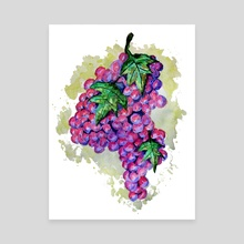 Purple Grapes from Africa - Canvas by Sebastian Grafmann