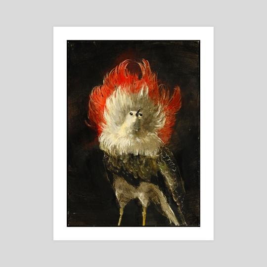 Fancy Breed Pigeon by Nicole Duennebier