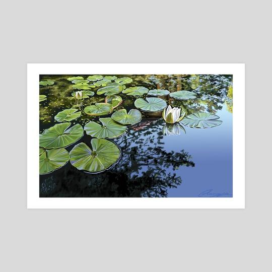 A quiet pond by Sasha