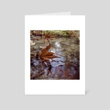 A u t u m n • L e a v e s - Art Card by Gees Art Photography