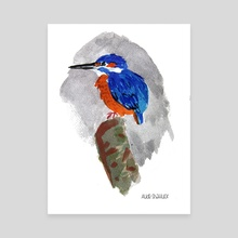 Kingfisher - Canvas by Aude Shattuck