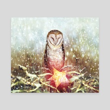 Owl & Star - Canvas by Pure  Art