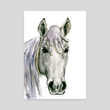 Horsey - Canvas by Daria Popova