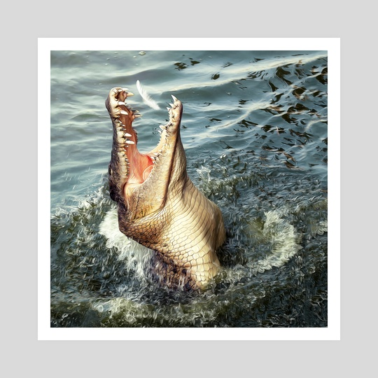 Animals - Crocodile by MURAT SAYGINER
